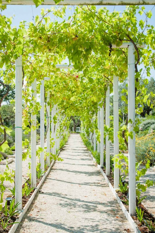 Tenuta del Lauro Missoni giardino